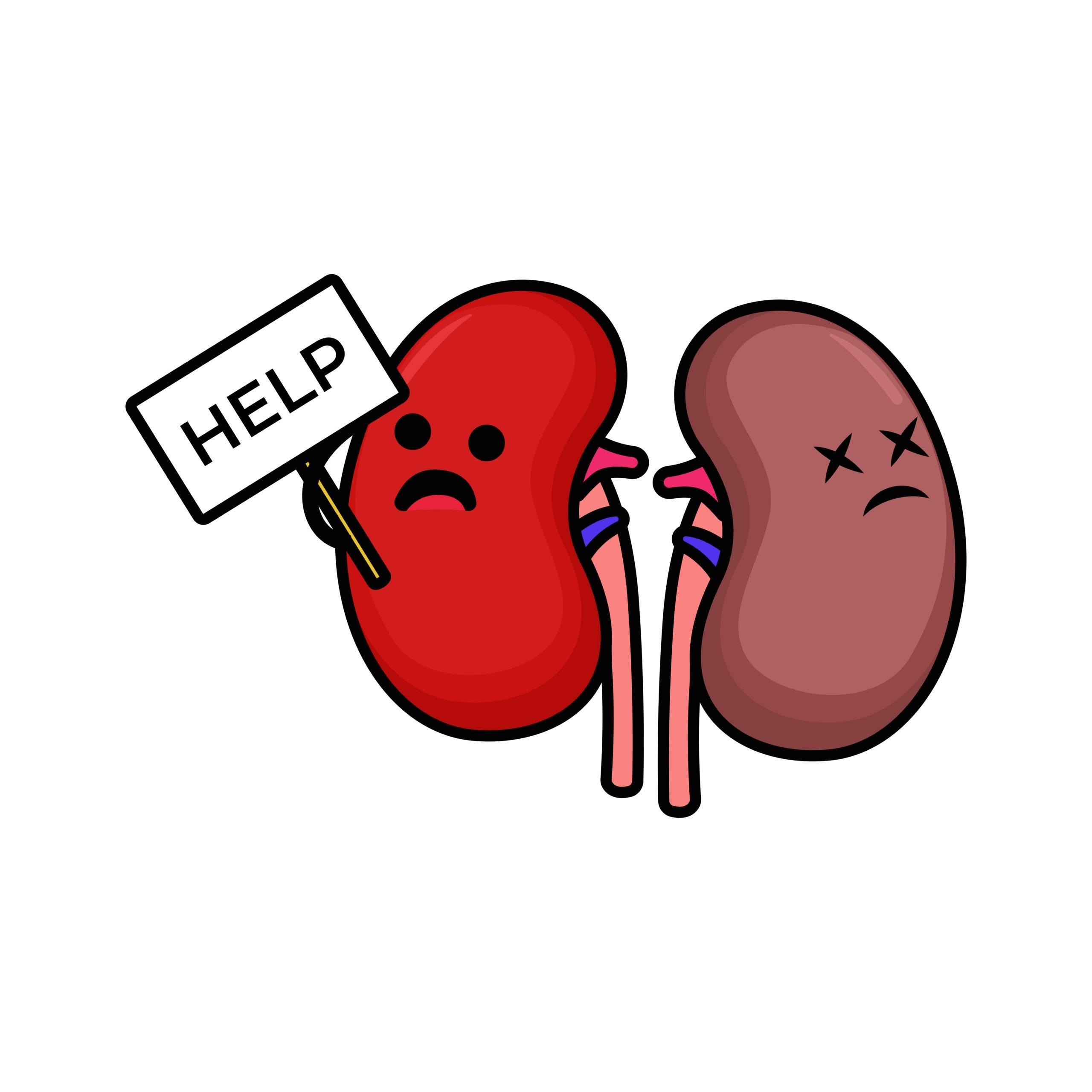 Kidneys Don't Work